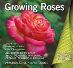 Growing Roses Plan Plant And Maintain