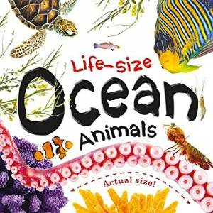 Life-Size: Ocean Animals by Various