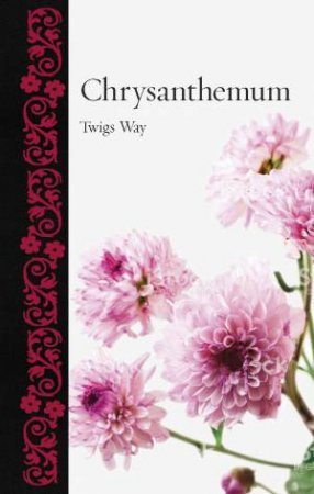 Chrysanthemum by Twigs Way