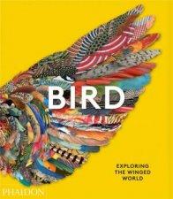 Bird Exploring The Winged World
