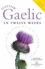 Scottish gaelic in Twelve Weeks by Roibeard O Maolalaigh