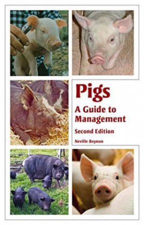 Pigs: A Guide to Management by BEYNON NEVILLE