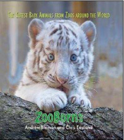 Zooborns by Andrew Bleiman & Chris Eastland