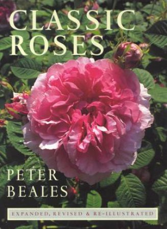 Classic Roses by Peter Beales