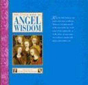 The Little Book Of Angel Wisdom by Peter Lamborn Wilson
