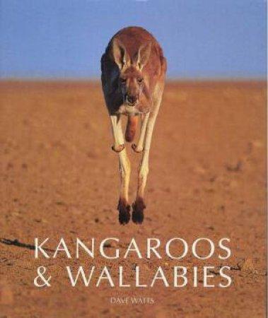 Kangaroos & Wallabies by Dave Watts