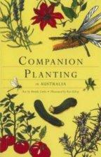 Companion Planting In Australia
