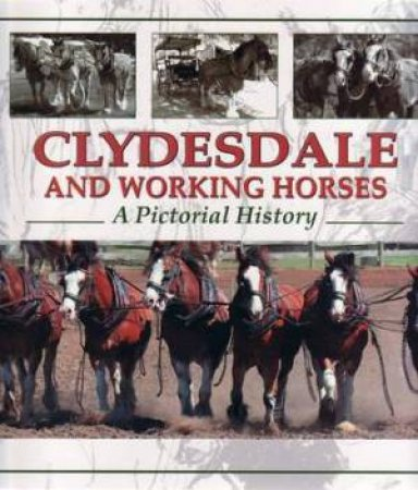 Clydesdale and Working Horses by Denise Angus