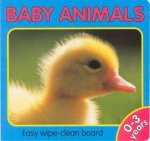 Animal Fun Baby Animals