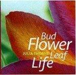 Bud Flower Leaf Life