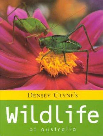 Densey Clyne's Wildlife Of Australia by Densey Clyne