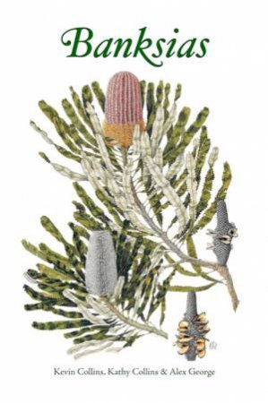 Banksias by Various