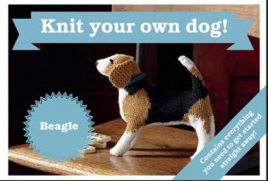 Best in Show Kit: Beagle by Sally Muir