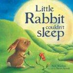 Little Rabbit Couldnt Sleep