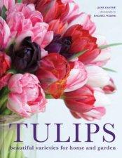 Tulips Beautiful Varieties For Home And Garden