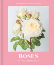 Roses Beautiful Varieties For Home And Garden