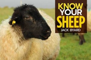 Know Your Sheep by Jack Byard