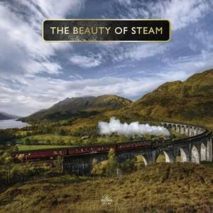 The Beauty Of Steam by P. Waller