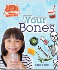 Human Body Your Bones