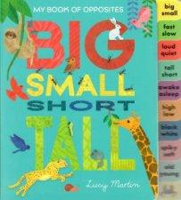 Big Small Short Tall