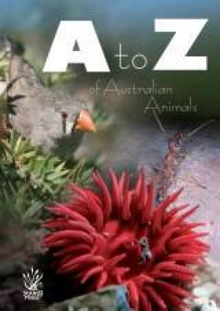 A-Z Of Australian Animals by Various