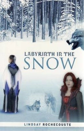 Labyrinth in the Snow