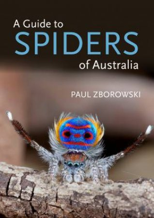 A Guide To Spiders Of Australia by Paul Zborowski