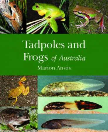 Tadpoles And Frogs Of Australia by Marion Anstis