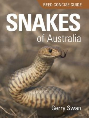 Reed Concise Guide: Snakes Of Australia by Gerry Swan