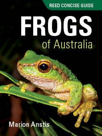 Reed Concise Guide: Frogs Of Australia by Marion Anstis