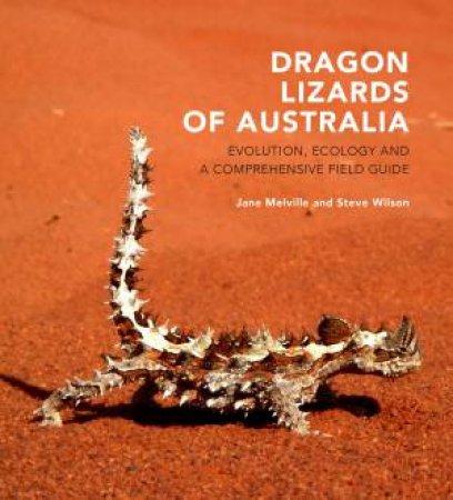 Dragon Lizards Of Australia