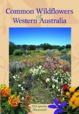 Common Wildflowers Of Western Australia