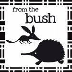 Crinkly Book of Aussie Animals: From the Bush by Jill Brailsford