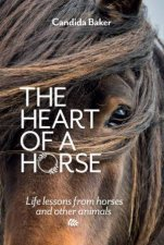 The Heart Of A Horse