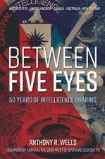 Between Five Eyes 50 Years Of Intelligence Sharing
