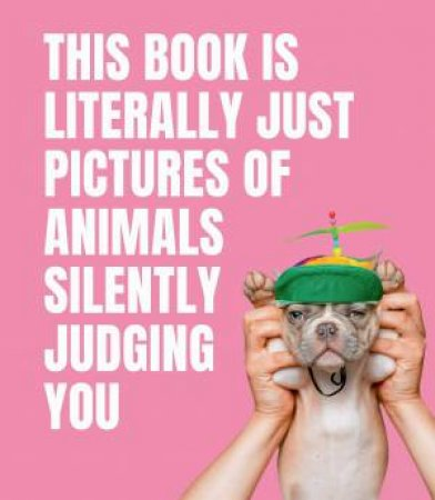 This Book Is Literally Just Pictures Of Animals Silently Judging You by Various