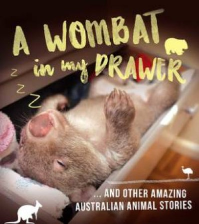 A Wombat In My Drawer And Other Amazing Animal Stories by Ros Almond