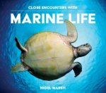 Close Encounters With Marine Life