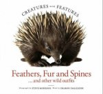 Creatures With Features Feathers Fur And Spines