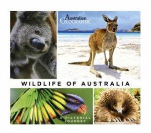 Wildlife Of Australia by John Pickrell