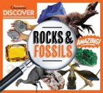 Australian Geographic Discover Rocks And Fossils