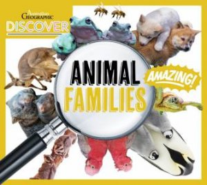 Discover: Animal Families by Various