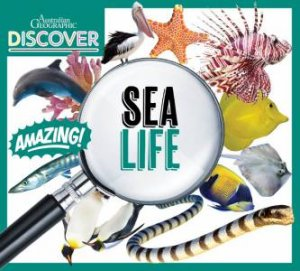 Australian Geographic Discover: Sea Life by Various