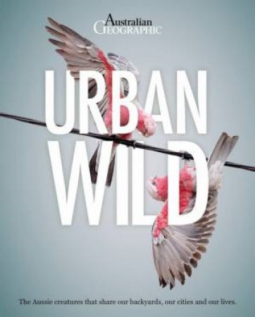 Urban Wild by Various