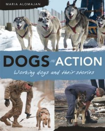 Dogs in Action by Maria Alomajan
