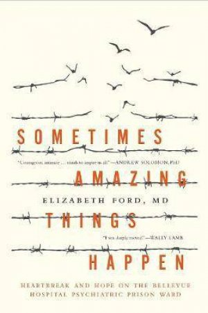 Sometimes Amazing Things Happen by Elizabeth Ford