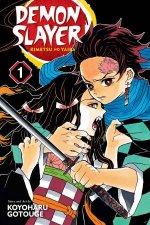 Demon Slayer Kimetsu no Yaiba 01