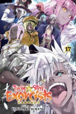 Twin Star Exorcists Vol 17