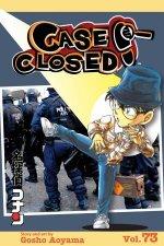 Case Closed Vol 73