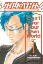 Bleach Cant Fear Your Own World Vol 1